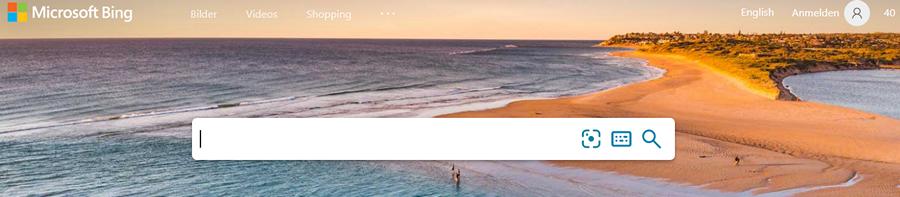 Sucheingabe bei Bing für SEO für Anfängerinnen