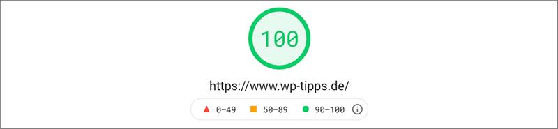 Ergebnisdarstellung PageSpeed Insights