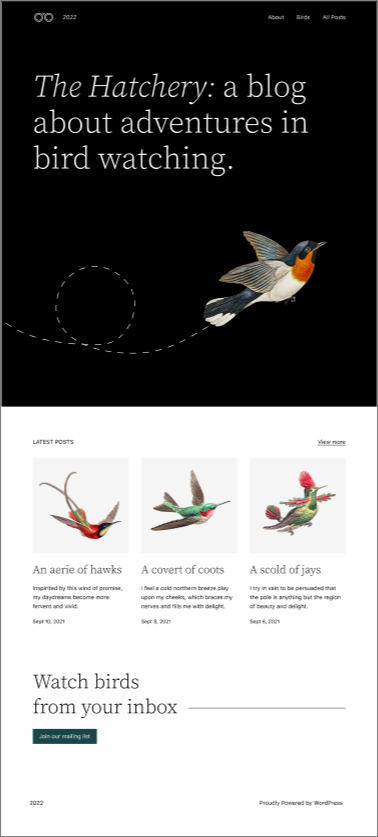 Scrennshot Homepage Design
